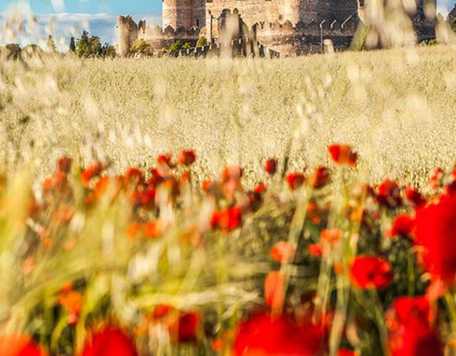 Organiza tu boda en Castilla y León