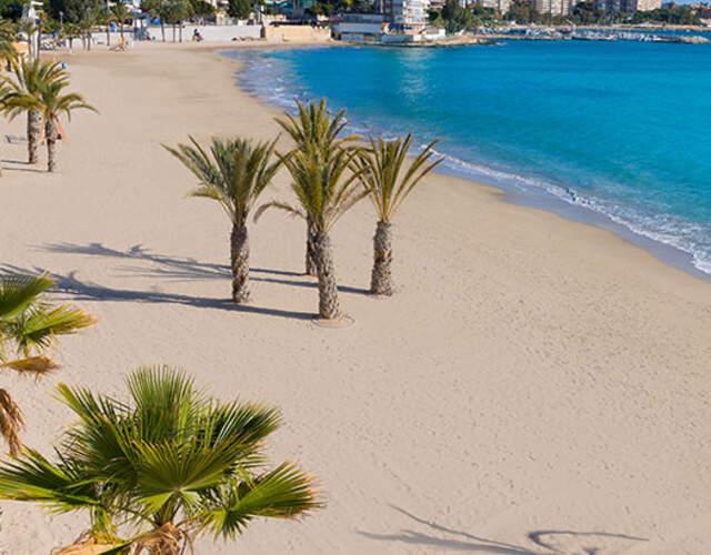 Organiza tu boda en San Juan de Alicante