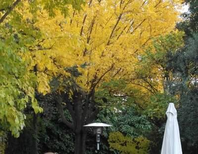 El Retiro   Jardín Piscina