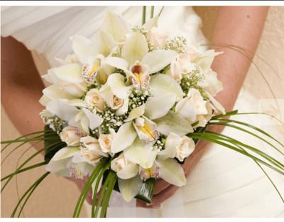 Flores Comos