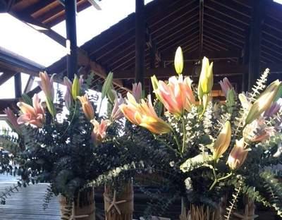 El Taller de les Flors